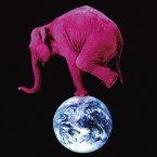 pink-elephant-15th